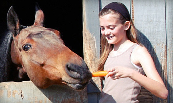 Fairhope Stables - Suwanee-Duluth: Two or Three Horseback-Riding Lessons, Party for 12, or Riding Camp at Fairhope Stables in Duluth (Up to 57% Off)