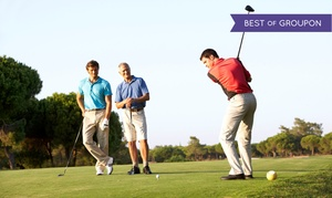 Impact Golf School: Three Private or Six Group Golf Lessons Including Range Balls at Impact Golf School (Up to 50% Off)