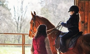 Harris Riding Academy: Two, Four, or Six Private Horseback-Riding Lessons at Harris Riding Academy(Up to 54% Off)
