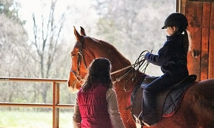 Two, Four, or Six Private Horseback-Riding Lessons at Harris Riding Academy(Up to 54% Off)