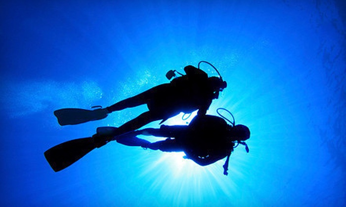 Capt. Saam's Scuba School - Glenbrook: $30 for a Two-Hour Discover Scuba Class at Capt. Saam's Scuba School ($100 Value)