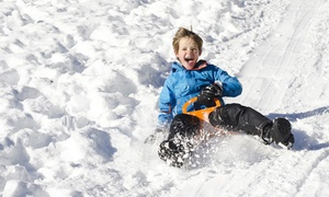 Snow World - Grand West: Snow and Ice Ride Pass at Snow World from R120 for One at Snow World GrandWest (Up to 42% Off)