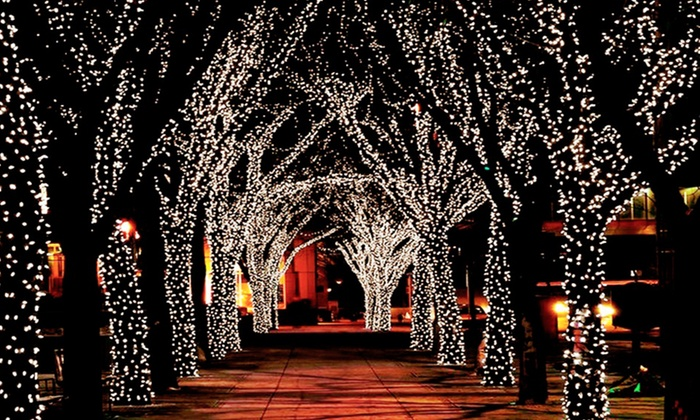 Solar String Lights For Palm Trees : String of 100 LED Solar Lights Groupon Goods