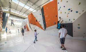 Monkey Island Roma: Lezione o corso di arrampicata per adulti, ragazzi e bambini da Monkey Island Roma (sconto fino a 89%)