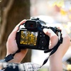 75% Off Intro Photography Class and Walking Tour