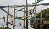 High Ropes and Outdoor Activities Package with a Hot Drink for Two or Four at Vivary Adventure Centre (Up to 33% Off)