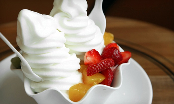 Yogolicious - Briarcliff Manor: Frozen Yogurt at Yogolicious in Pleasantville (Half Off). Two Options Available.