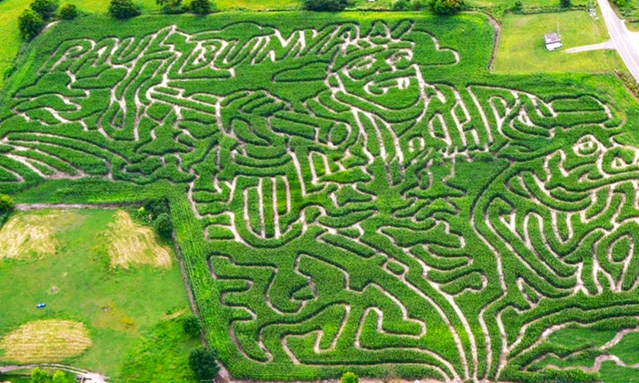 Shafer Corn Maze - Shafer: Visit for Two or Four to Stalkers of Corn Haunted Corn Maze at Shafer Corn Maze (Half Off)