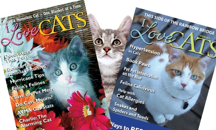 I Love Cats Magazine: 1-Year, 4-Issue Subscription to I Love Cats Magazine