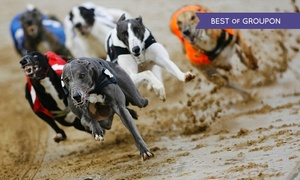 Love the dogs: Night at the Races with Admission, Race Programme, Choice of Drink and Burger for Two from £8 at Belle Vue Stadium