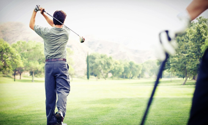 The Triangle Junior Golf School - Cary: 3, 6, or 12 45-Minute Indoor Group Golf Lessons at The Triangle Junior Golf School (Up to 62% Off)