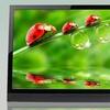 """Vizio 29"""" LED 60Hz 720p HDTV"""