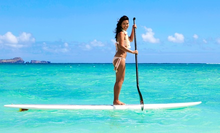 One- or Two-Hour Paddleboard Rental with Optional Lesson from Miami Beach Paddleboard (Up to 67% Off)