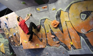 Roc Gyms: 2 or 4 Entries or One Month of Unlimited Indoor Climbing for One or Two at Roc Gyms (Up to 53% Off)