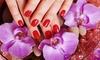 Shellac Manicure or Pedicure £12