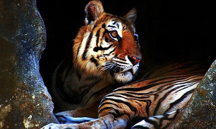 Zooparque Itatiba - Itatiba: Zooparque – Itatiba: ingressos para 2 adultos e 1 ou 2 crianças, a partir de R$ 49