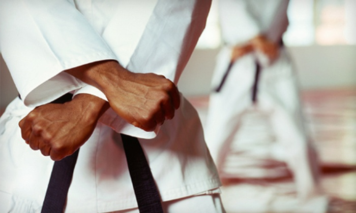 New Roc Shotokan Karate Do - Downtown New Rochelle: 10 or 20 One-Hour Karate Classes at New Roc Shotokan Karate Do in New Rochelle (Up to 77% Off)