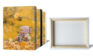 2-Pack Gallery Canvas Prints