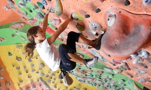 The Edge Halfmoon: One-Month or Full-Summer Climbing Pass at The Edge Halfmoon (Up to 58% Off)