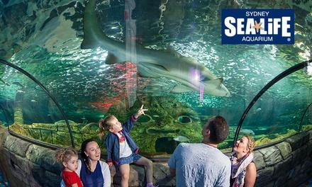 sydney sealife merchandising au deal of the day
