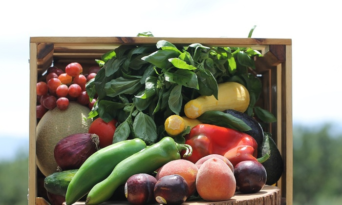 Eating with the Seasons - San Francisco: Up to 45% Off Produce Delivery  at Eating with the Seasons