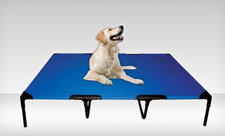 PetZoom Elevated Cot