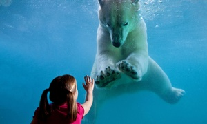 Point Defiance Zoo & Aquarium/Northwest Trek Wildlife Park: $210 for Deluxe Household Membership at Point Defiance Zoo/Northwest Trek Wildlife Park ($250 Value)