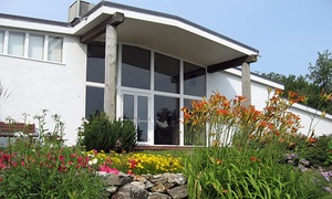 Ogunquit Museum Of American Art: Visit for Two or Four at Ogunquit Museum Of American Art (Up to 50% Off)