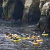 Up to 62% Off Water Excursions from Everyday California