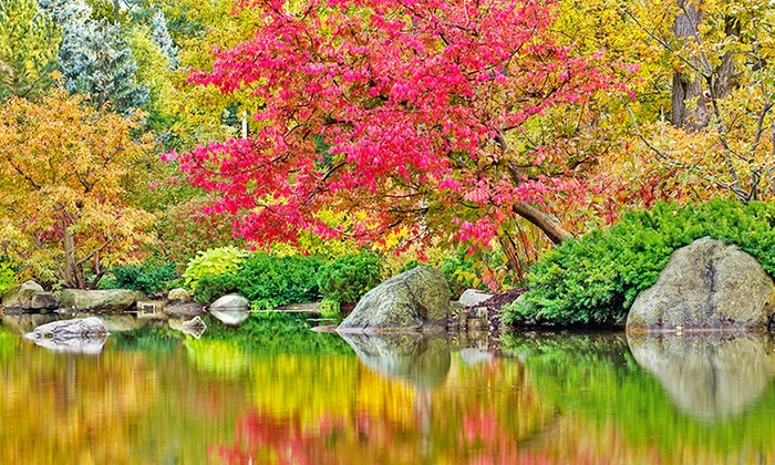 Anderson Japanese Gardens - Northeast: Four, Six, or Eight Visits to Anderson Japanese Gardens in Rockford (Up to 50% Off)
