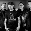 Street Dogs – Up to 48% Off Punk Concert