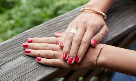 $34 for Full Set of SNS Nails or $55 for Gel Manicure and Pedicure at Js Pink Lady Nails Up to $98 Value