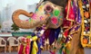 11-Day Tour of India from Bohemian Tours