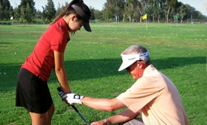 Two or Four 30-Minute Private Golf Lessons from Paul Young PGA (Up to 57% Off)