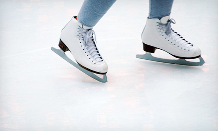Aliso Viejo Ice Palace - Aliso Viejo: Ice Skating for Two, or an Eight-Week Learn To Skate Class at Aliso Viejo Ice Palace (Up to 56% Off)
