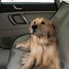 Pet Store Waterproof Pet Seat Cover