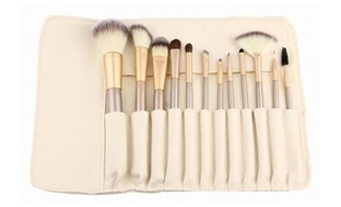 Professional 12 Piece Makeup Brush Set with Pouch