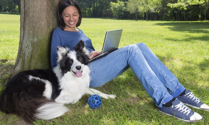 DaisyFlo: Online Animal Care & Welfare Course, Online Animal Behavior & Psychology Course, or Both from DaisyFlo (Up to 96% Off)