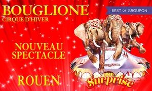 CIRQUE D'HIVER BOUGLIONE: 1 place pour adulte/enfant, catégories au choix pour le cirque d'hiver Bouglionedu 19 au 21 mai 2017dès 10 € à Rouen