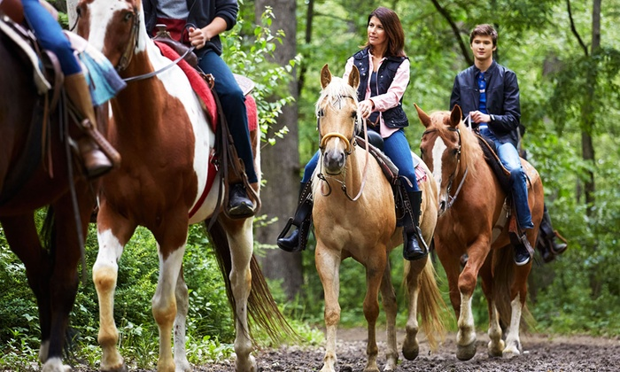 A&A Historical Trails Stables - Central City: Historic Graveyard Guided Riding Trip for Two or Four from A&A Historical Trails Stables (30% Off)