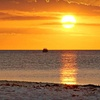 Up to Half Off Nature Cruise in Fort Myers Beach