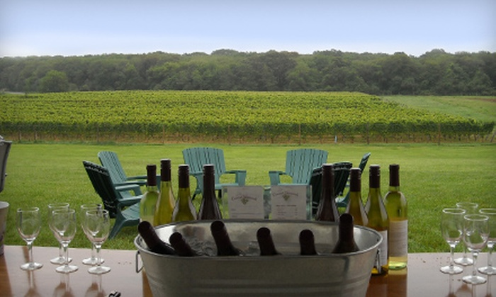 Coastal Vineyards - South Dartmouth: $12 for a Wine-Pairing Overview and Vineyard Tour for Two at Coastal Vineyards ($25 Value)