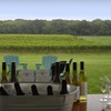 52% Off a Vineyard-Tour Package