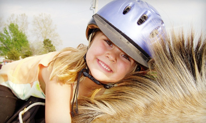 Stepping Stone Ranch - Palmyra: One or Three Private Horseback-Riding Lessons at Stepping Stone Ranch in Baldwin City (Up to 60% Off)