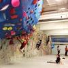 Up to 43% Off Indoor Climbing at Rock Spot Climbing