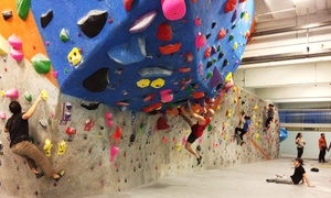 Rock Spot Climbing: One or Three One-Day Rock-Climbing Passes with Gear Rental at Rock Spot Climbing (Up to 53% Off)