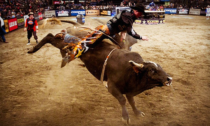 PBR: Built Ford Tough Series - Madison Square Garden: PBR: Built Ford Tough Series Bull-Riding Event at Madison Square Garden on Friday, January 4, at 8 p.m. (Up to Half Off)