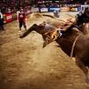 Professional Bull Riders – Up to Half Off Bull-Riding Event