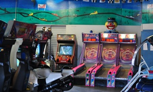Family Amusement Centre & Mini Indy: CC$125 for CC$250 Worth of arcade party package at Family Amusement Centre & Mini Indy