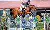 Eurosport Horses - Riverside Rancho: One or Three English Horseback-Riding Lessons at Eurosport Horses (Up to 55% Off)